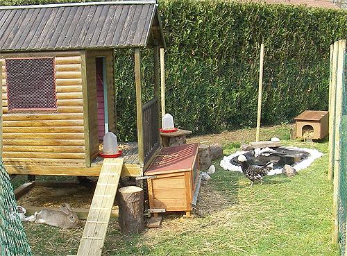 construction d 39 un enclos pour poules lapins canards. Black Bedroom Furniture Sets. Home Design Ideas